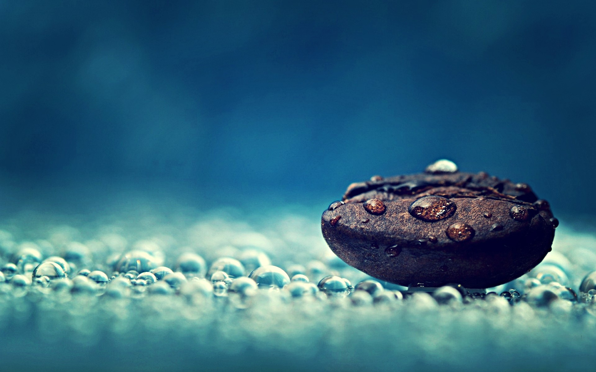 coffee-macro-photography-live-wallpaper